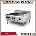 bep-au-4-hong-co-ran-phang-dung-gas -OB4GG1B-17-600px