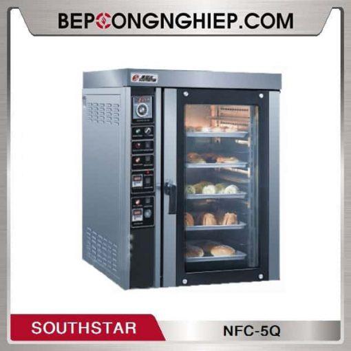Lo-nuong-doi-luu-dung-gas-Southstar-NFC-5Q