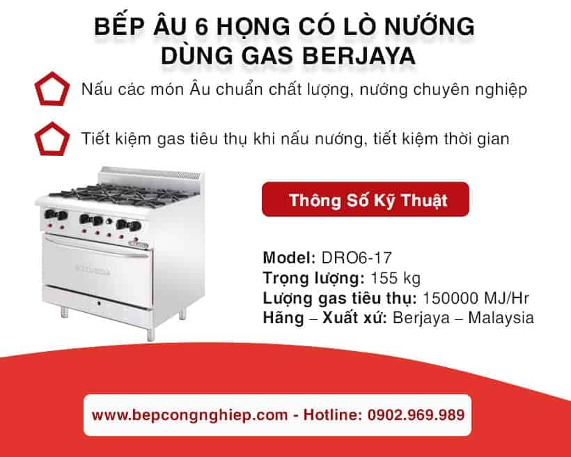 bep-au-6-hong-co-lo-nuong-DR06-17-1