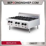 bep-au-6-hong-dung-GAS-OB6-17-600px