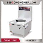 bep-tu-ham-don-Shine-True-STI-8KS40C-600px