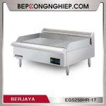 bep-chien-nua-phang-nua-nham-dung-dien-berjaya-eg5250hr-17